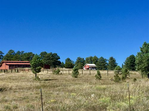 Tolley Ranch Freese Road Unit : Kiowa : Elbert County : Colorado
