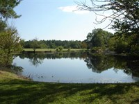 Home With 41 Acres of Privacy, Fis : Moultrie : Colquitt County : Georgia