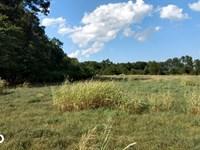 Dr. Truitt Drive 1 : Bear Creek : Chatham County : North Carolina