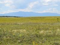 Gorgeous Views - Horse Welcome : Colorado City : Pueblo County : Colorado