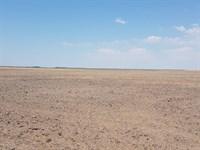 Olsen Dryland : Dix : Kimball County : Nebraska