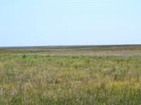 Yung Crp Farmland : Kimball : Kimball County : Nebraska
