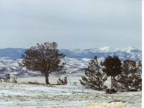 Monument Ranch w/Mtn Views (N1322) : Absarokee : Stillwater County : Montana