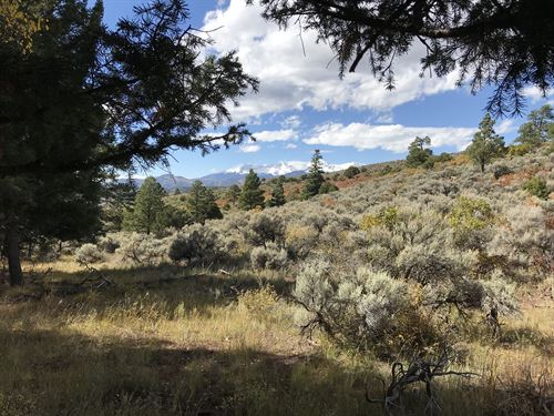 Forbes Wagon Creek Ranch - Lot 268 : Fort Garland : Costilla County : Colorado