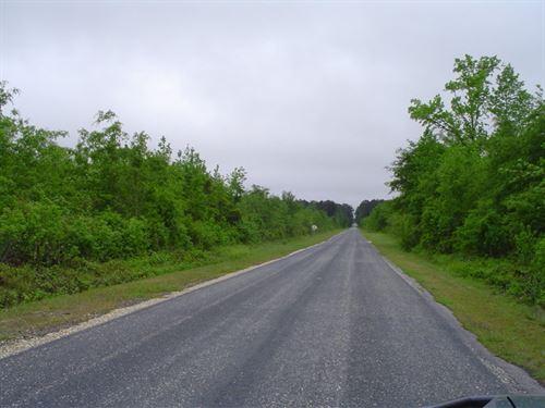 Camp Tract 3 : Latta : Dillon County : South Carolina