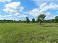 Mini Farm & Country Home Site : Perry : Houston County : Georgia