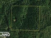 County Road 82 Timber And Recreatio : Lineville : Randolph County : Alabama