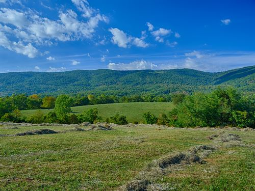 Expansive Blue Ridge Mtn Views : Afton : Albemarle County : Virginia