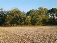 Timber Creek Farm : Pearl : Pike County : Illinois