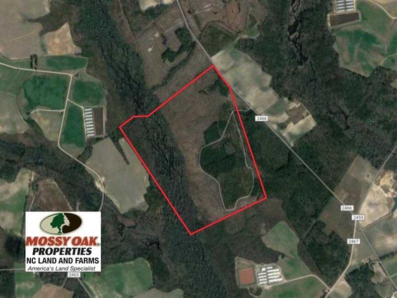 Under Contract, 215 Acres of Prim : Fairmont : Robeson County : North Carolina