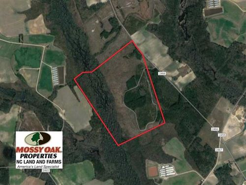 Under Contract, 215 Acres of Prim : Fairmont : Robeson County : North Carolina