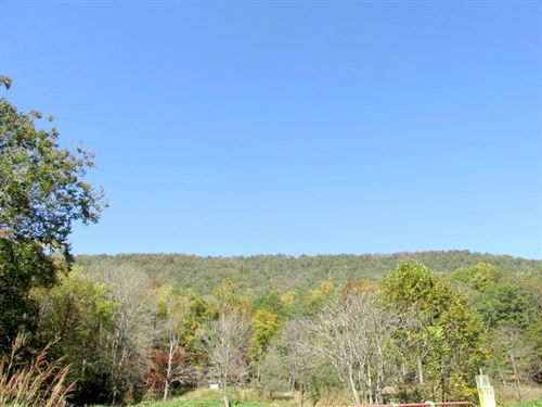For Sale - 168 Acres Of Timberland : Salem : Roanoke County : Virginia