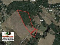78.7 Acres of Residential Hunting : Shannon : Hoke County : North Carolina