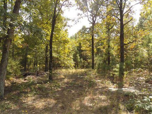 30 Acres Porter Rd/Shirley AR $49 : Shirley : Van Buren County : Arkansas