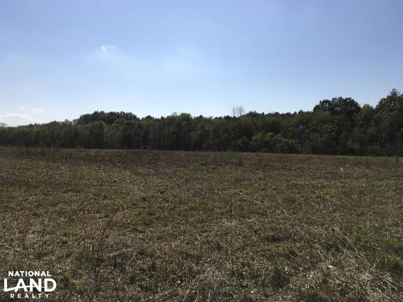 Drake Hill Road Hunting And Crp Ranch For Sale
