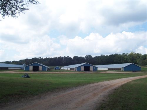 Northeast Georgia Poultry Farm : Maysville : Jackson County : Georgia