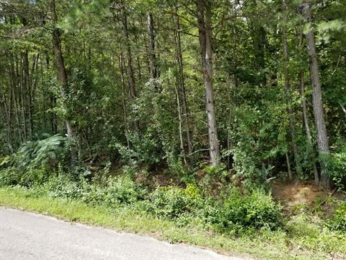 12.5+/-Acres Wooded Hunting Propert : Tracy City : Marion County : Tennessee