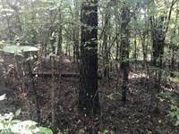 Hwy 69 North Hunting, Recreational : Berry : Tuscaloosa County : Alabama