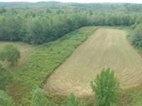Sneads Creek Hunting Opportunity : Gordo : Pickens County : Alabama