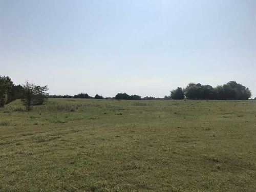 Price Reduced, 160 Acres Pasture : Epes : Sumter County : Alabama