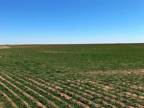 Box Butte County Dryland & Pasture : Hemingford : Box Butte County : Nebraska