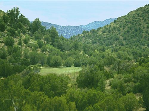 Northwest Arizona's Best Land Buy : Peach Springs : Mohave County : Arizona