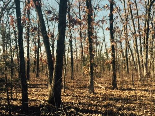 Reduced, Great 80 Acres in Benton : Warsaw : Benton County : Missouri