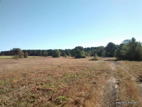 60 Ac, Tract For Home Site, Recrea : Garrison : Nacogdoches County : Texas