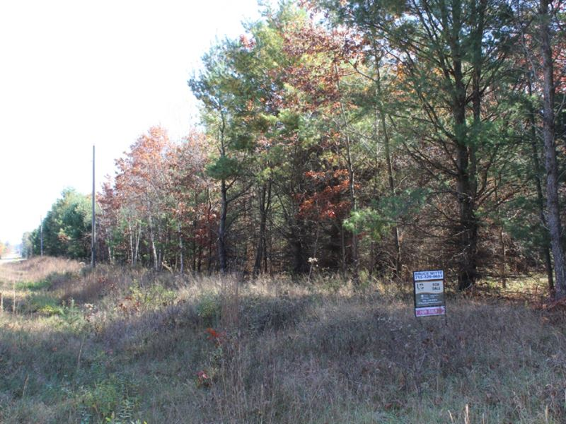 Wooded Acreage With Marketable Timb : Neillsville : Clark County : Wisconsin