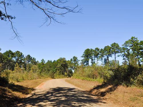 167 Ac Cr 3316 San Augustine, Tx : San Augustine : Texas