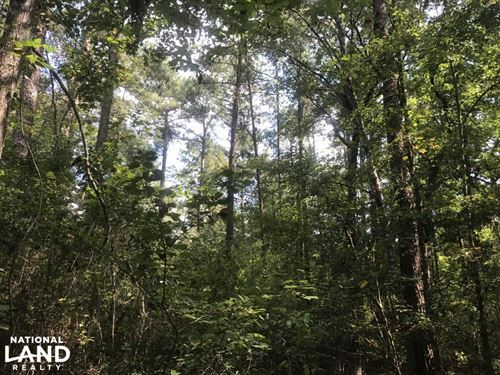 Residential Land Near Sumrall : Sumrall : Lamar County : Mississippi