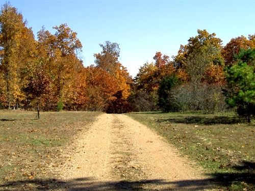 10 Acres, Wooded, Hunt / Homestead : Gentryville : Douglas County : Missouri
