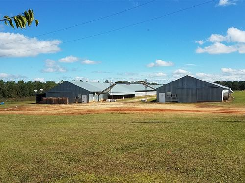 Two Breeder House Farm On 34+/- Ac : Ashford : Houston County : Alabama