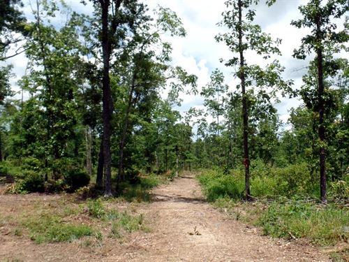 14.5 Acres, Clearing, Near Town : West Plains : Howell County : Missouri