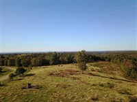 18 Acres Residential Farmland : Marshall : Searcy County : Arkansas