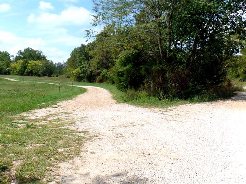 18 Acres, Pasture, Creek, Electric : Cabool : Texas County : Missouri