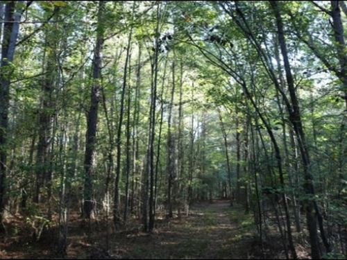 30 Acres In Neshoba County : Philadelphia : Neshoba County : Mississippi