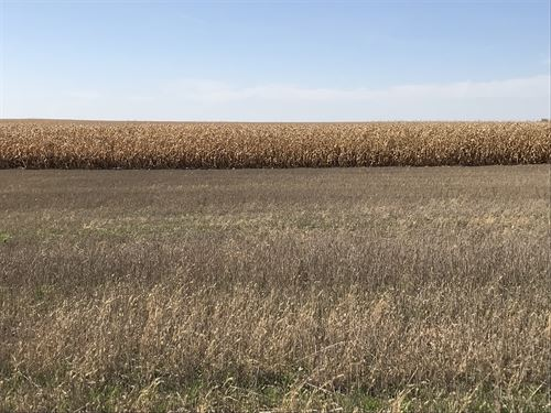 315 Acres - Brown County Farm Land : Frederick : Brown County : South Dakota