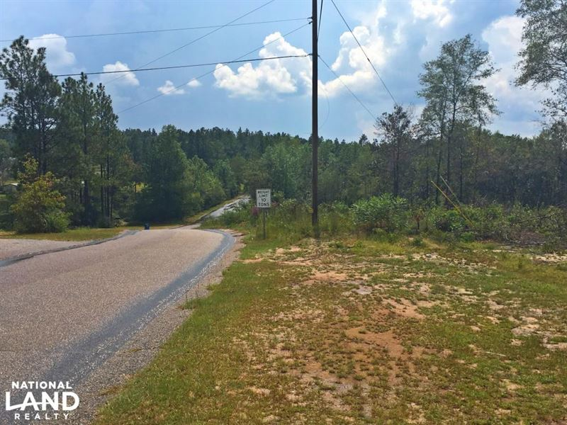 Woodland Road Puppy Creek Tract : Ranch for Sale