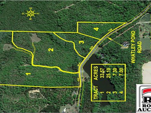 73+/- Acres Offered In 4 Tracts : Reynolds : Taylor County : Georgia