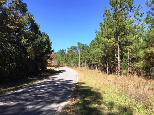 Guy Hart Road Tract - Tract 1557 : Lexington : Henderson County : Tennessee