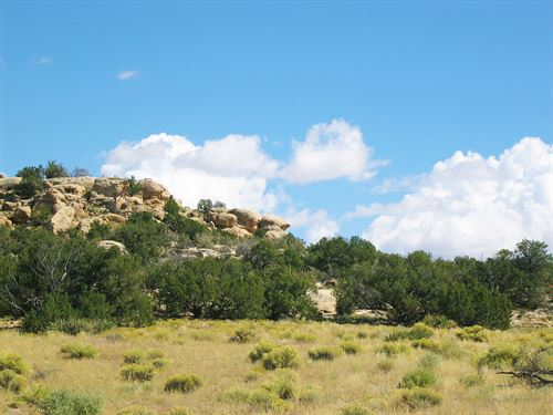 Arizona's Best Wilderness Ranch : St. Johns : Apache County : Arizona