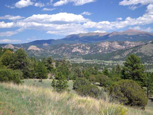 Free Spirit : Cripple Creek : Teller County : Colorado