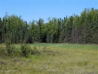 80 Acres - Spacious True Alaskan : Wasilla : Matanuska-Susitna Borough : Alaska