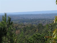 Great Rural Recreation & Home Site : Childersburg : Talladega County : Alabama