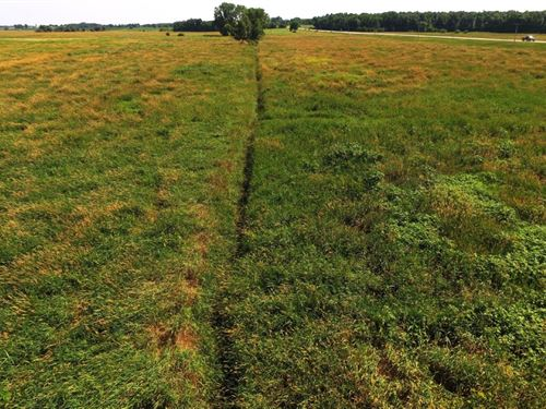 120+/- Acres Ag. Land And Hunting : Berlin : Waushara County : Wisconsin