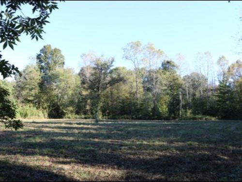187 Acres In Kemper County : Porterville : Kemper County : Mississippi