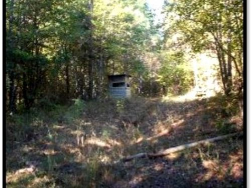137.68 Acres In Grenada County : Gore Springs : Grenada County : Mississippi