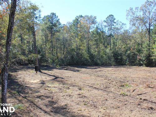 National Forest 10 Acres : Jamestown : Berkeley County : South Carolina