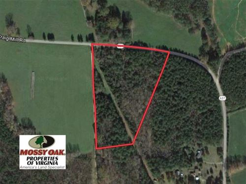 10 Acres of Timber Land For Sale : South Hill : Lunenburg County : Virginia